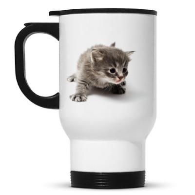 Кружка-термос Любопытный котенок