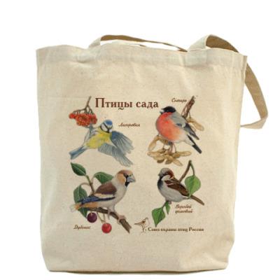 Птицы сада