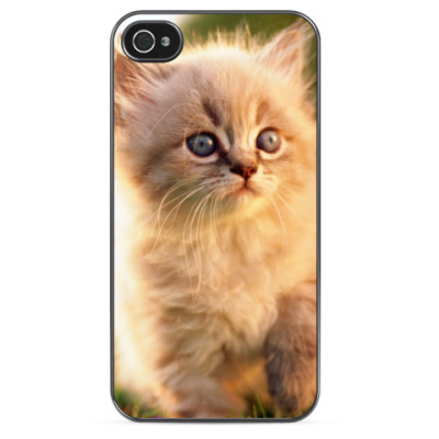 Чехол для iPhone Котейка