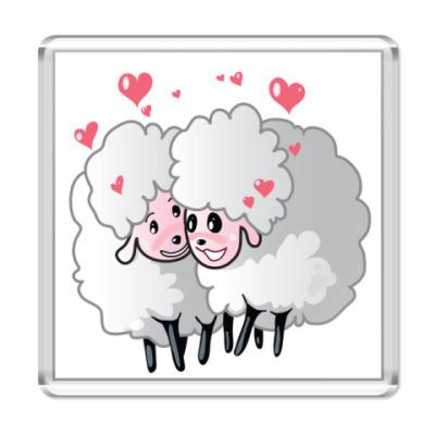 Магнит Две овечки