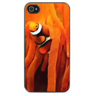 Чехол для iPhone Рыбка