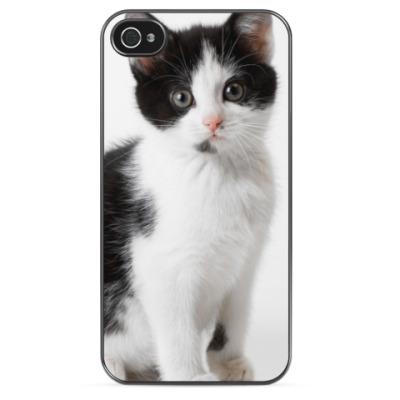 Чехол для iPhone Белый Мурзик, черное ухо.
