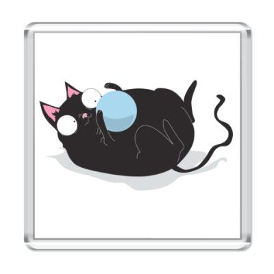 Магнит Кот и мячик