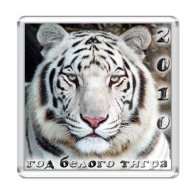 "Магнит  ""Год белого тигра"""