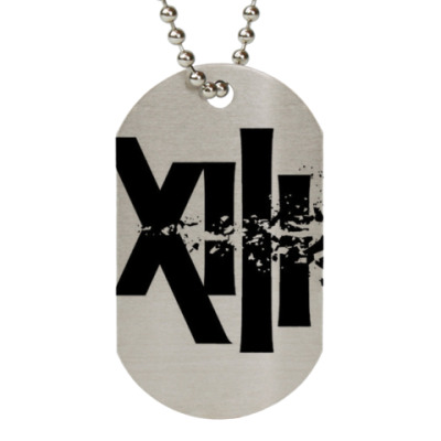 XIII; the series