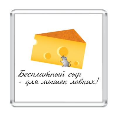 Магнит Сыр