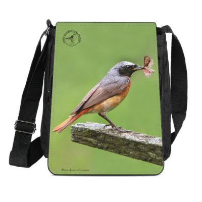 Сумка-планшет Обыкновенные горихвостки