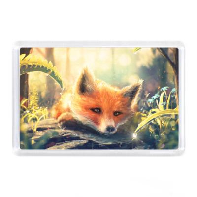 Магнит Fox
