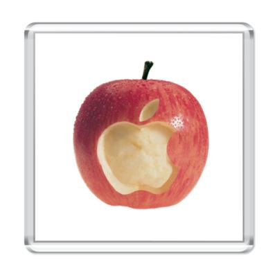 Магнит  Apple