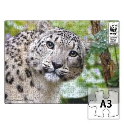 Пазл WWF. А3. Снежный барс.
