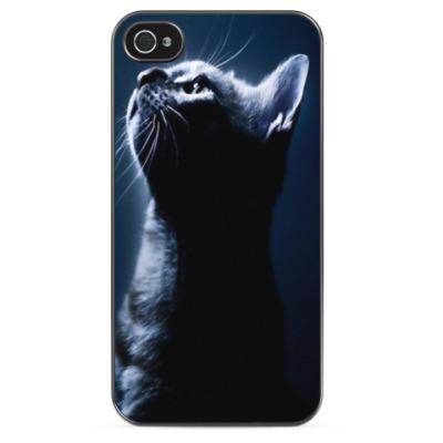 Чехол для iPhone Кот