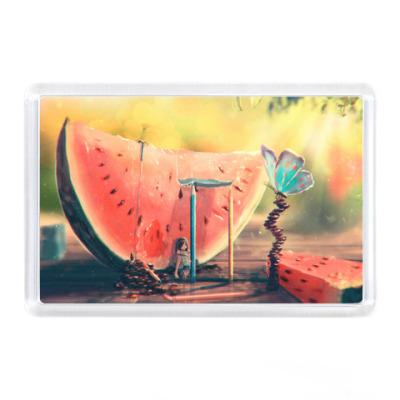 Магнит Watermelon