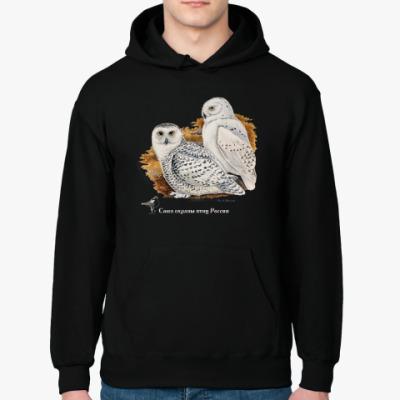 Толстовка худи Белые совы