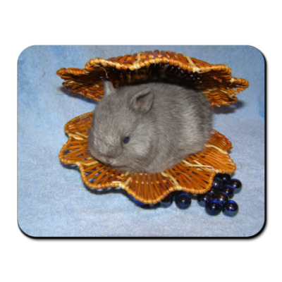 Коврик для мыши Коврик для мыши
