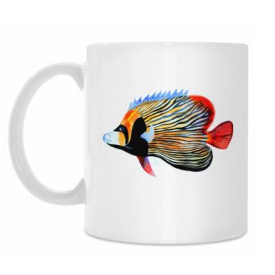 Кружка рыбный день